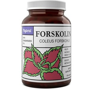 Phytoral Pure and Potent Forskolin